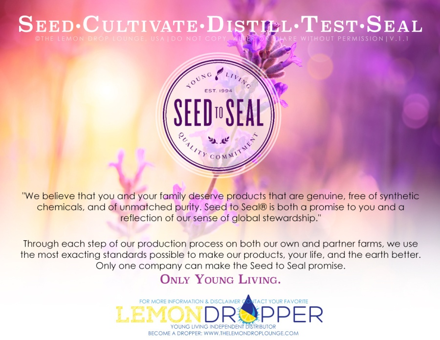 SEED TO SEAL 2.1